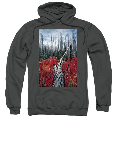 Afterburn Sweatshirt