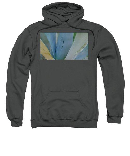 Agave Colors Sweatshirt