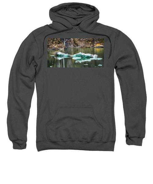 Alaskan Icebergs Sweatshirt