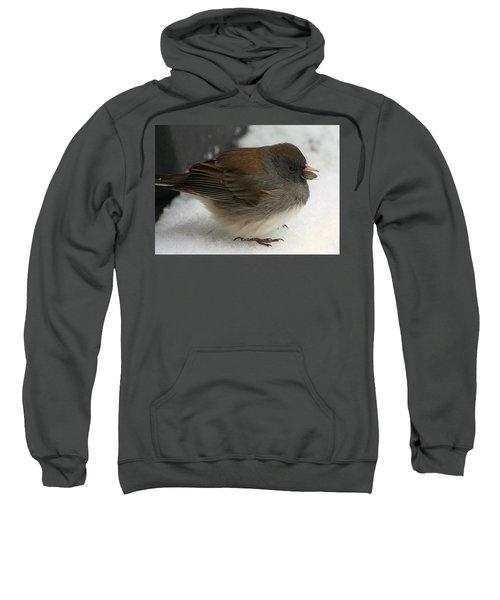 All Puffed Up Sweatshirt