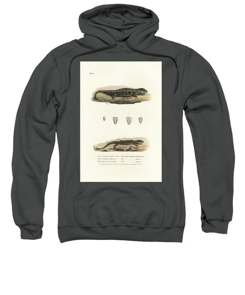 Alligator Lizards From Mexico Sweatshirt