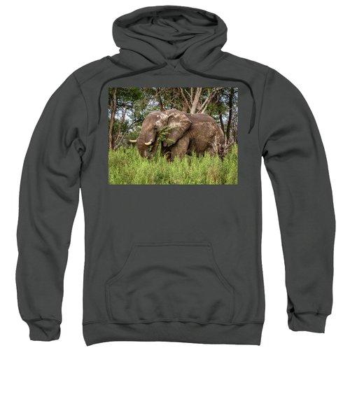 Alpha Male Elephant Sweatshirt