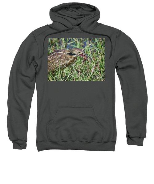 Am Bittern And Crayfish Sweatshirt