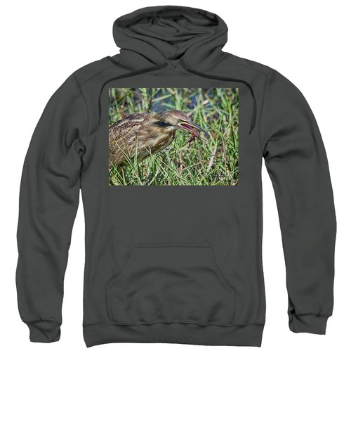 Am Bittern And Crayfish Sweatshirt