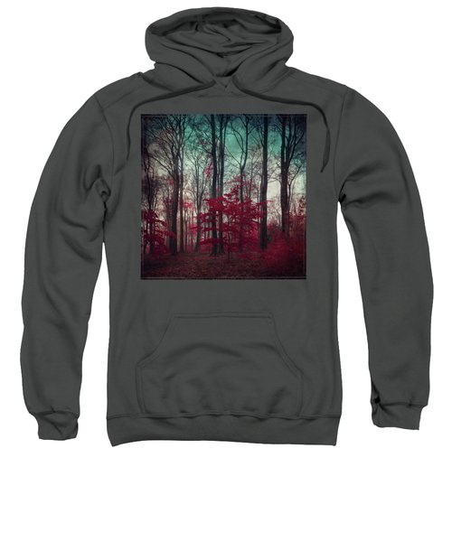 A.maze - Enchanted Red Forest Sweatshirt