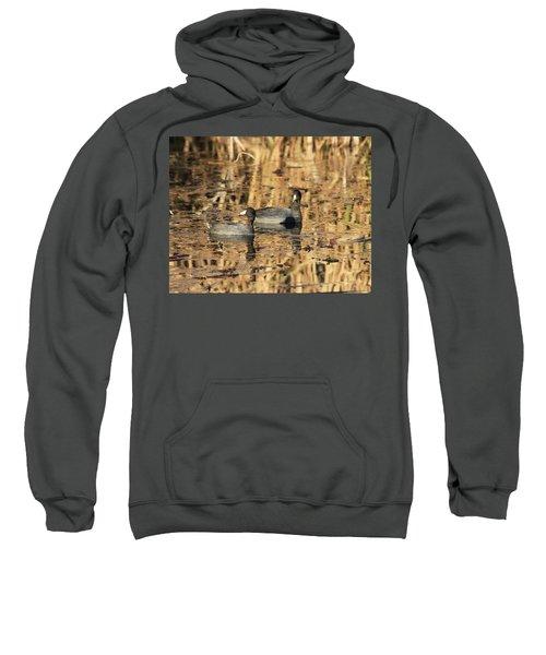 American Coots Sweatshirt
