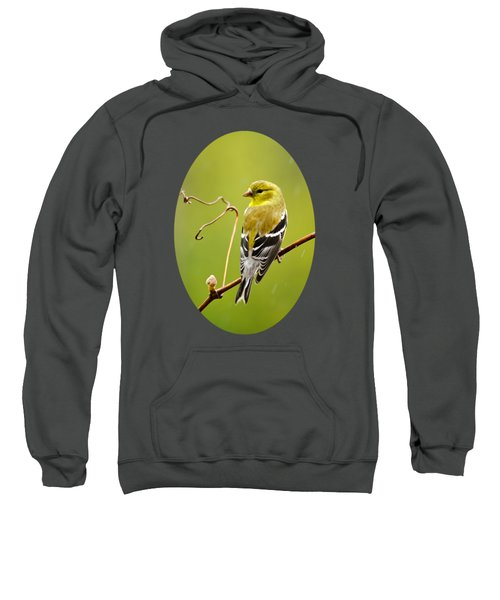 American Goldfinch In The Rain Sweatshirt by Christina Rollo