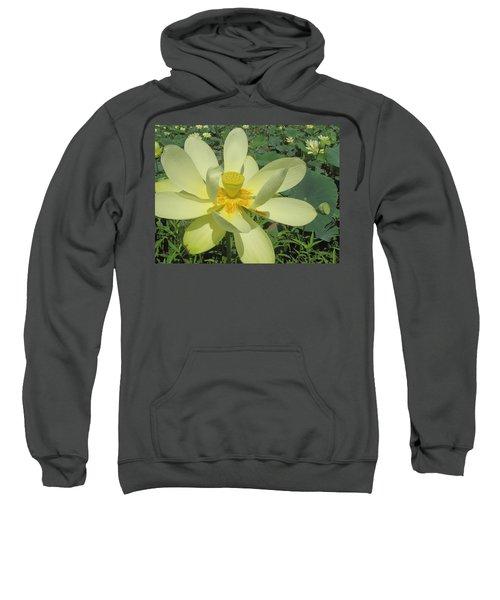 American Lotus Sweatshirt