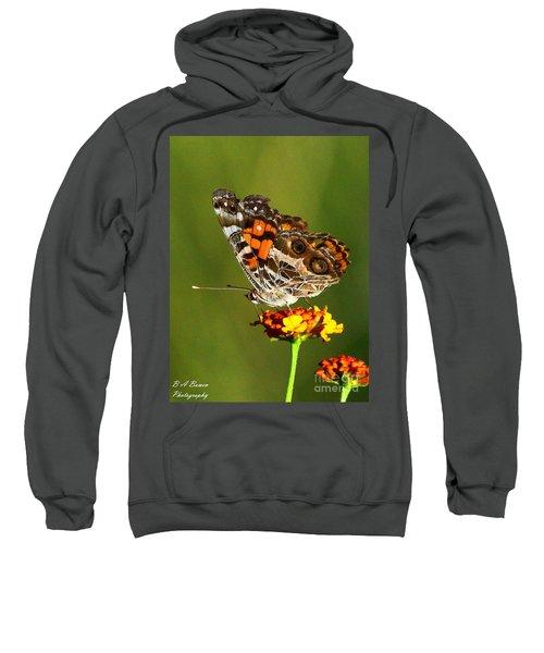 American Painted Lady Sweatshirt