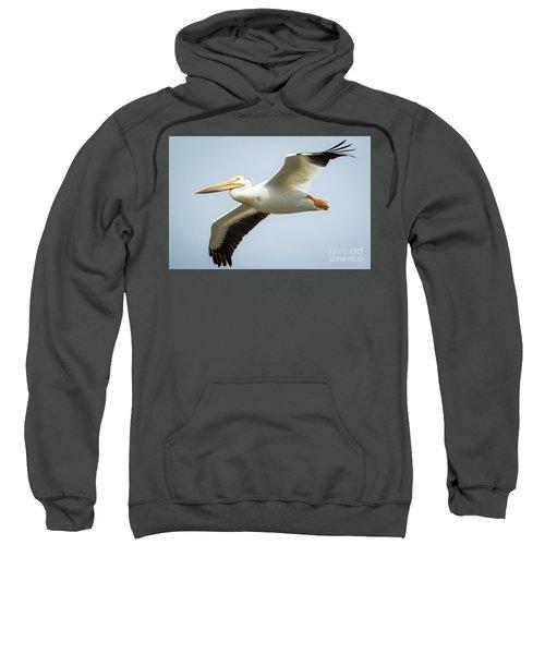 American White Pelican Flyby  Sweatshirt