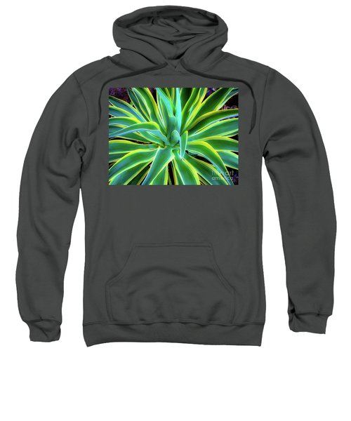 An Agave In Color  Sweatshirt