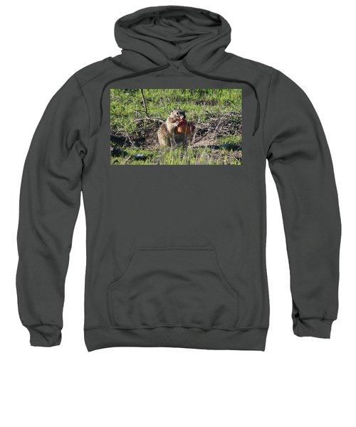 An Apple A Day - 2 Sweatshirt