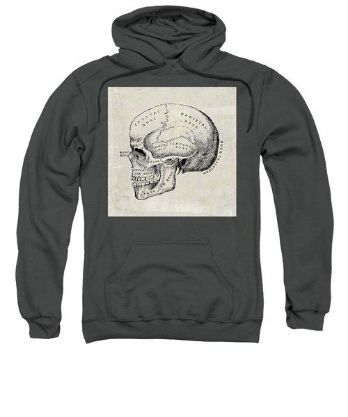 Anatomical Skull Medical Art Sweatshirt