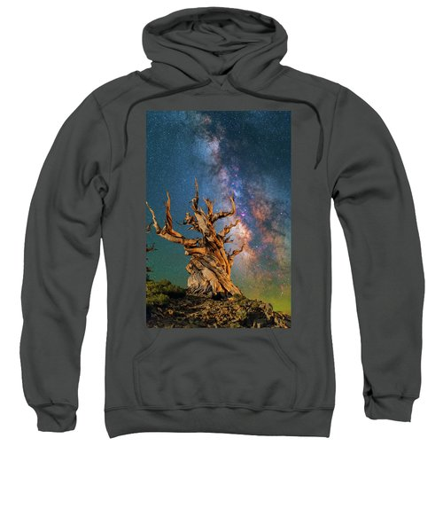 Ancient Beauty Sweatshirt