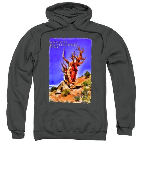 Ancient Bristlecone Pine Sweatshirt