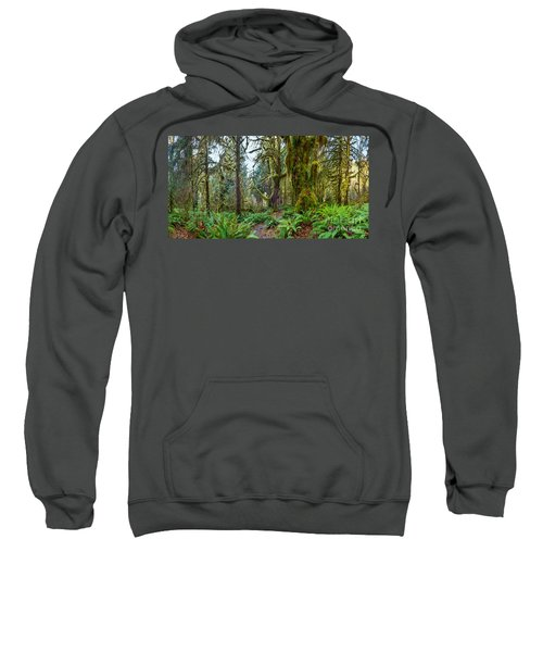 Ancient Forest Panorama Sweatshirt