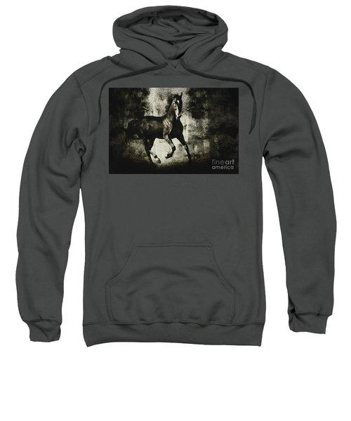 Andalusian Horse Sweatshirt