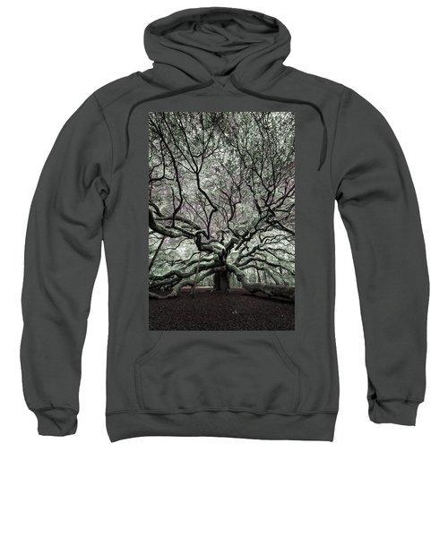 Angel Oak In Infrared Sweatshirt