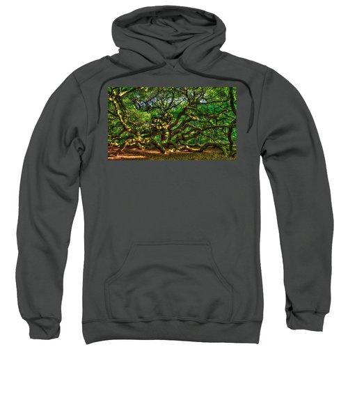Angel Oak Morning Shadows Johns Island Landscape Charleston South Carolina Art Sweatshirt