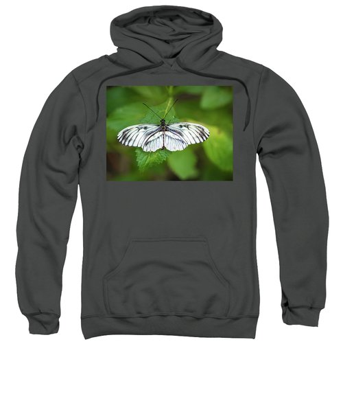 Angry Butterfly With A Mustache Sweatshirt
