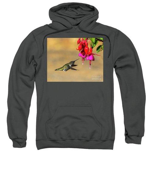 Anna And Hardy Fuchsia Flower Sweatshirt