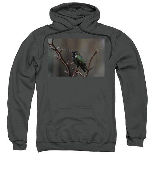 Anna Rainwings Sweatshirt