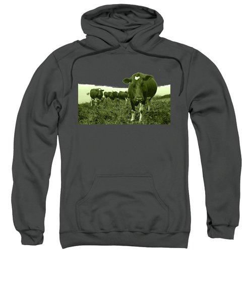 Annoyed Cow Sweatshirt