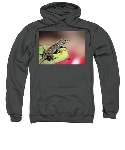 Anole In Rose Sweatshirt