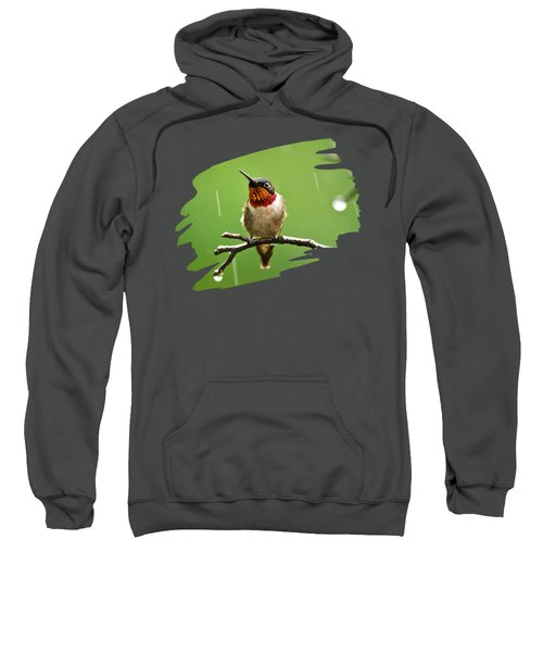 Another Rainy Day Hummingbird Sweatshirt by Christina Rollo