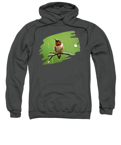 Another Rainy Day Hummingbird Sweatshirt