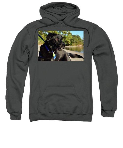 Apollo On The Beach Sweatshirt