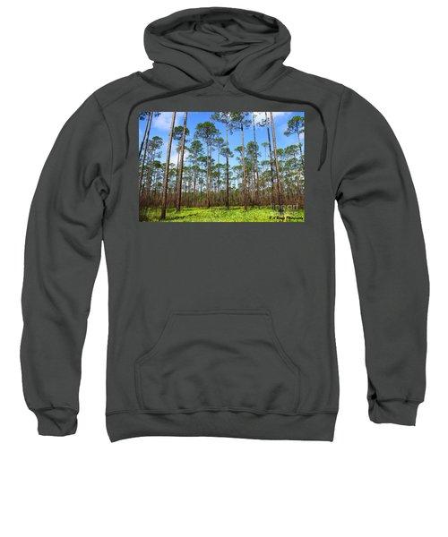 Appalachicola National Forest Sweatshirt