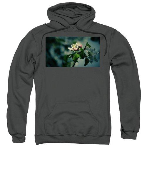 Apple Blossom Sweatshirt