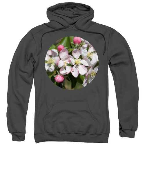 Apple Blossom Time Sweatshirt