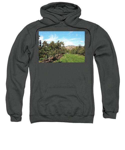 Apple Picking Sweatshirt