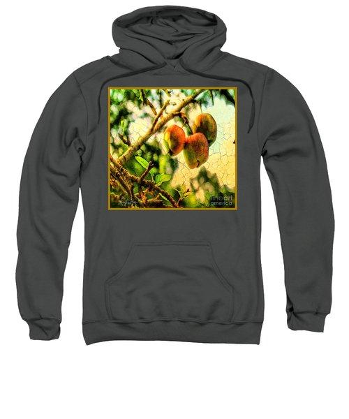 Apple  Season Sweatshirt