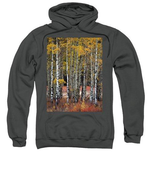 Appreciation Sweatshirt