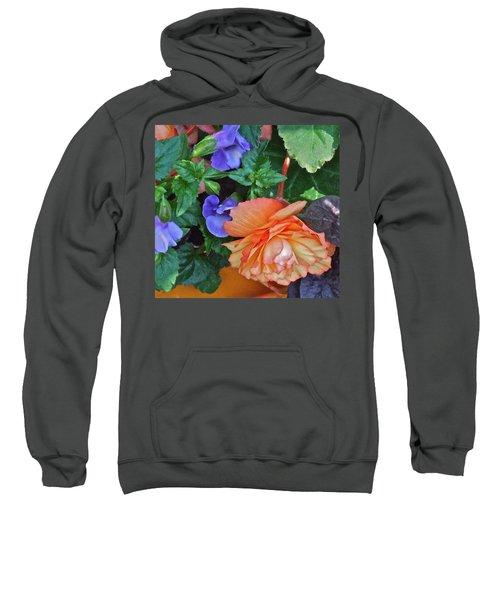 Apricot Begonia 1 Sweatshirt