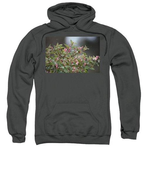 April Showers 10 Sweatshirt