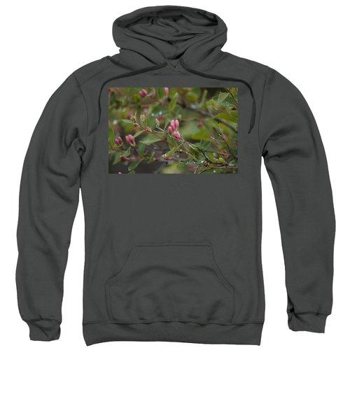 April Showers 2 Sweatshirt
