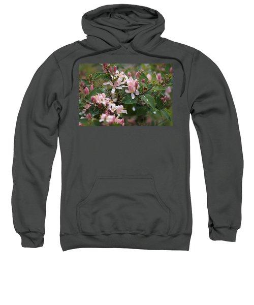 April Showers 8 Sweatshirt