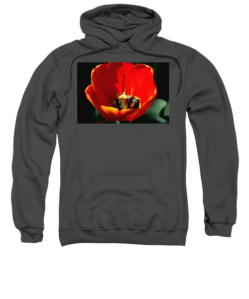 April Tulips Sweatshirt