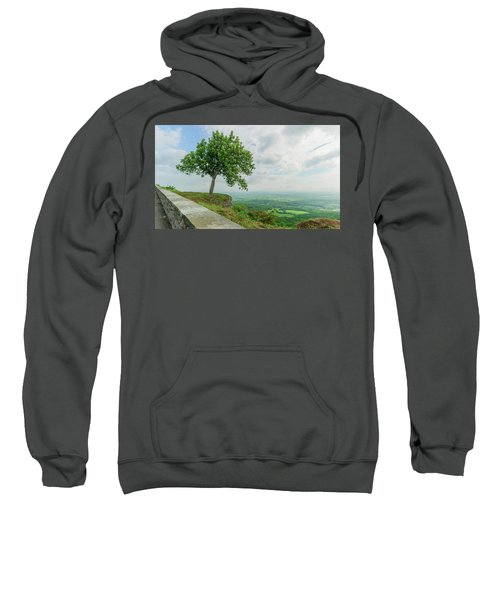 Arbor Day Sweatshirt