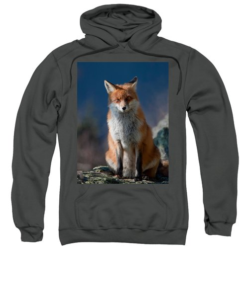 Are You My Friend Or Not? Sweatshirt