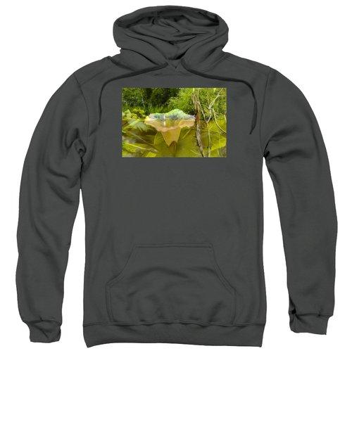 Artistic Double Sweatshirt