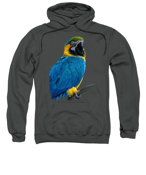Blue Yellow Macaw No.2 Sweatshirt