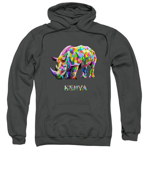 Wild Rainbow Sweatshirt