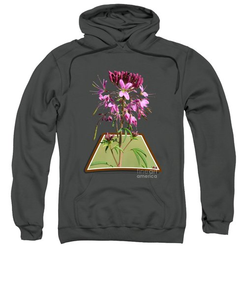 Rocky Mountain Bee Plant Sweatshirt by Shane Bechler
