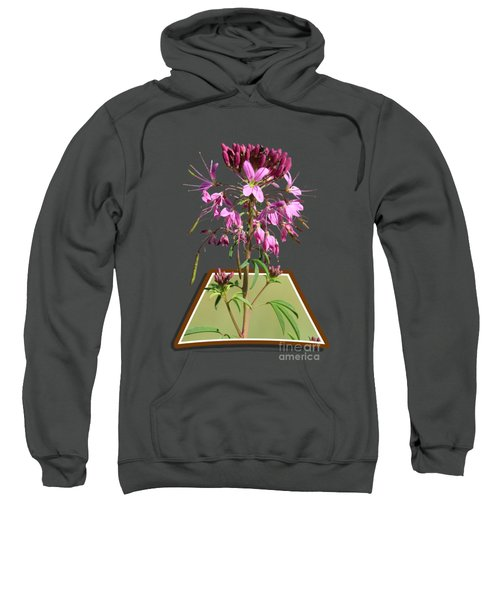 Rocky Mountain Bee Plant Sweatshirt
