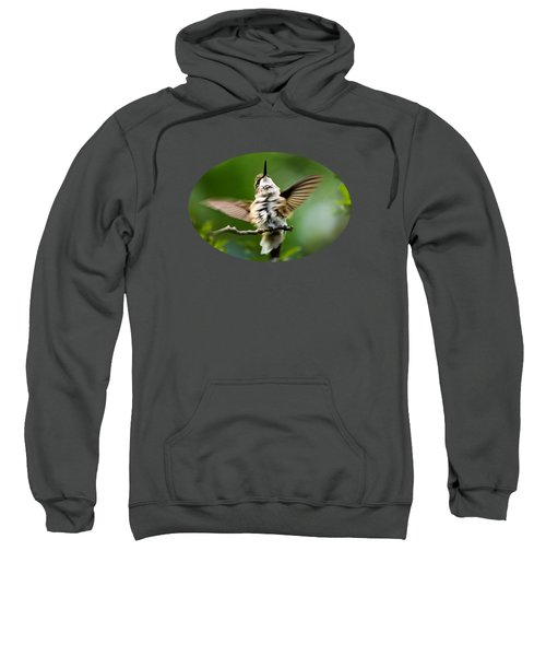 Hummingbird Happy Dance Sweatshirt by Christina Rollo